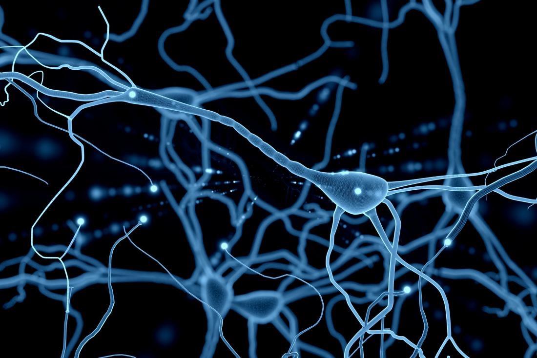 مغز چگونه به ناعدالتي پاسخ ميدهد؟