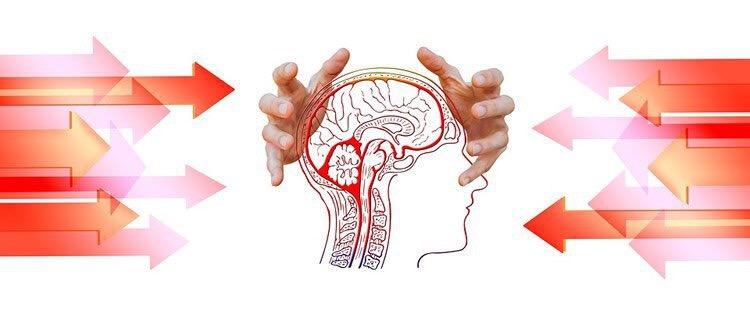 ٢٠ خبر مهم علوم اعصابي سال ٢٠١٧ از ديدگاه سایت neurosciencenews
